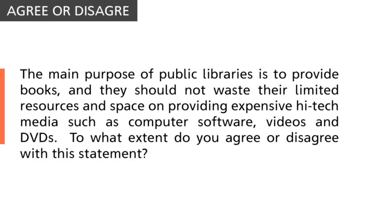 main purpose of public libraries is to provide books
